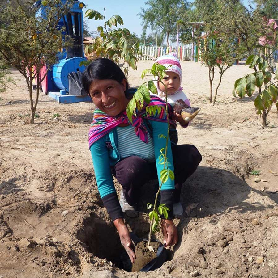 Photograph of a women and her child planting a tree on the Barfoots Farm in Peru